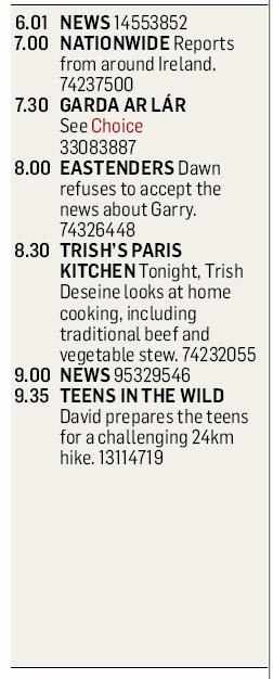 The Irish Times - Monday, February 16, 2009 - Page 24