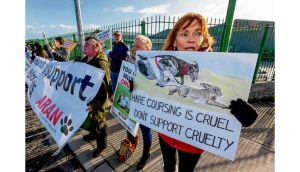Protesters at the Aran and Irish Coalition Against Blood Sports picket of the National Coursing Championships in Clonmel, Co Tipperary, yesterday.