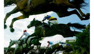 Horses at Aintree - food safety inspectors believe equine carcasses were given to a Welsh meat plant. photograph: reuters