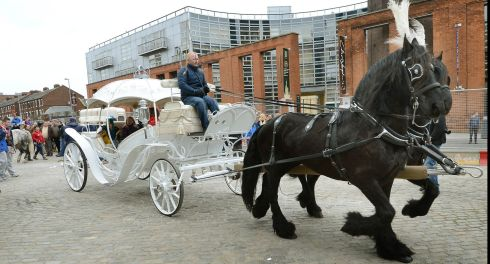 An elaborate horse drawn carriage photographed at the fair. Photograph: Brenda Fitzsimons/The Irish Times