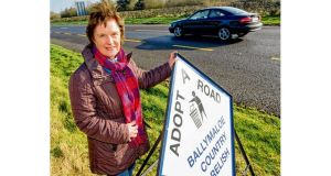 Yasmin Hyde on a stretch of the N25 in Co Cork that her company, Ballymaloe Country Relish, has adopted. Photograph: Michael Mac Sweeney/Provision