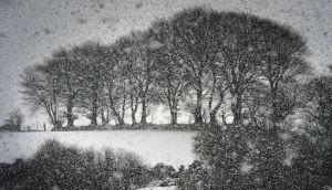 "Wicklow snowfall in January. Met Éireann has issued a ""status orange"" warning, the second most serious warning it can give under a new alert system.  Photograph: Cyril Byrne /The Irish Times"