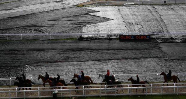 punters focus split between cheltenham and the vatican what are