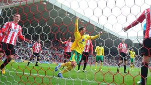 Norwich City's Wes Hoolahan celebrates his goal against Sunderland. Photograph: Owen Humphreys/PA Wire.