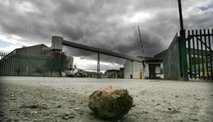A lone sugar beet outside the  Greencore Sugar Factory in Carlow, just before it was about to close in 2005. The Beet Ireland group, which has been campaigning to reopen the Irish sugar industry, has said it hopes to announce its chosen site for the processing of sugar beet within the next month or so.  Photograph: Alan Betson