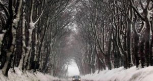 A motorist drives past snow covered trees near Dundrod in Co Antrim today. Photograph: Cathal McNaughton/Reuters