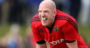 Paul O'Connell make his long-awaited return for Munster today. Photograph:  James Crombie/Inpho