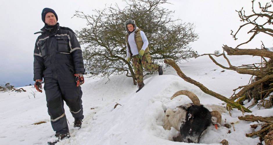 Wintry weather hits Ireland