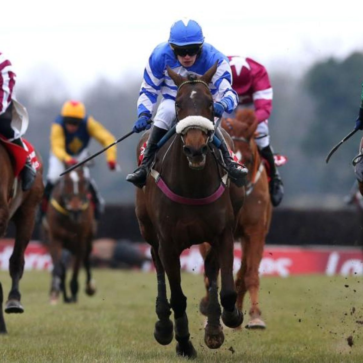 Topham trophy betting on sports farming bitcoins