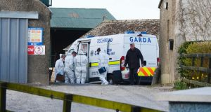 Gardaí at the farm near Swords where the body of a man was found yesterday. Photograph: Alan Betson