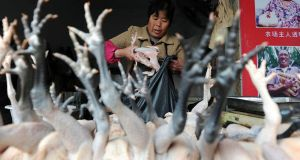 A vendor puts chickens into a plastic bag at a poultry market in Hefei, Anhui province, today. Chinese authorities reported four new cases  of a strain of bird flu previously unknown in humans that has already killed two people. Photograph: Reuters
