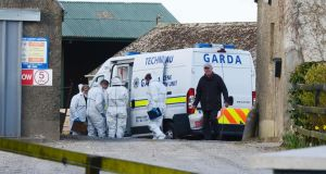 Gardaí believe Mr Timosejevs's remains were not in the field at Balheary by late afternoon on Monday. Photograph: Alan Betson/The Irish Times