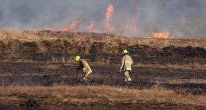 Fire service personnel at the scene of a gorse and forestry fire near Connolly in Co Clare yesterday. Photograph: Pat Flynn/Press 22