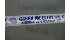 Gardai found the three guns wrapped in plastic on the roof of the school at Basin Lane, Dublin 8.