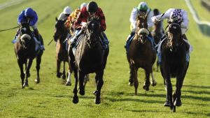 Trading Leather (right) may run in Leopardstown's Ballysax Stakes.