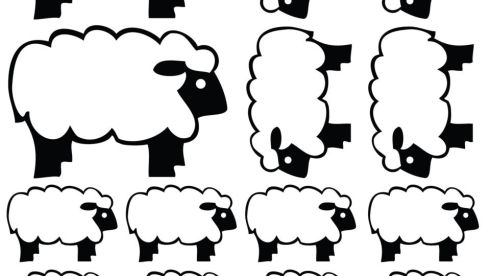 """I Am Not A Sheep . . . a person regarded as timid, weak, or one who is easily swayed or led,"" is just one of the motivating sheep-inspired slogans from UK-based Spin Collective (spincollective.co.uk). The motivating wall sticker measures 60cm by 40cm and costs £18 (about €21.19). The website also has a selection of sheep-themed wall stickers that insomniacs could use to adorn their walls in a bid to nod off. A set of eight costs £22 (about €25.90), plus delivery of £9.99."