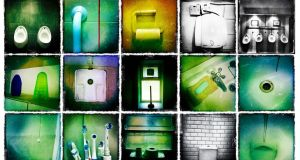 A small selection of the hundreds of photos taken in toilets over 12 months by Irish Times photographer Bryan O'Brien