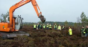 Rewetting: blocking part of the 60km of drains on Abbeyleix Bog, which allows the bog to re-form rapidly