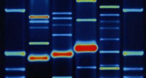 The structure of DNA was a discovery but one based on practical chemistry