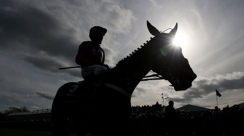 Sprinter Sacre with jockey Barry Geraghty celebrating victory over Sizing Europe in the Boylesports.Com Champion Chase during Boylesports Day at the 2013 Festival at Punchestown Racecourse. Photograph: Julien Behal/PA Wire