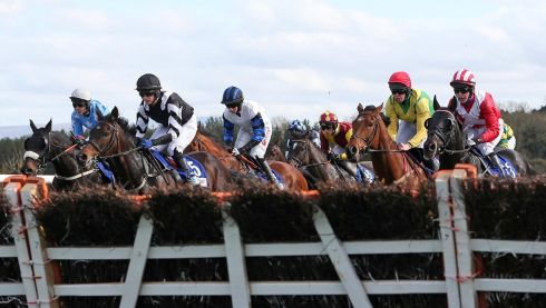 Preparing to jump in the bragbet.com Handicap Hurdle at Punchestown. Photograph: Donall Farmer/Inpho