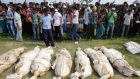 Bodies of unidentified garment workers who died in the collapse of the Rana Plaza building in Savar lie on the ground as people gather to watch a mass burial in Dhaka yesterday. Photograph: Reuters/Andrew Biraj