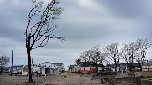 A charred tree is viewed in front of  burned and damaged homes in Breezy Point, which was heavily damaged in Hurricane Sandy. Photograph: Spencer Platt/Getty Images
