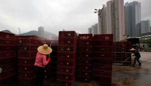 Workers clean empty cages, which were used to transport chickens, after morning trading at a wholesale poultry market in Hong Kong.