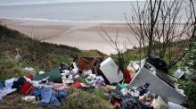 Rubbish dumped at a beach in Wicklow. Photograph: Eric Luke/The Irish Times