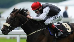 Princess Highway and Pat Smullen: Trainer Dermot Weld's ultimate objective with this high-class filly will be to pick up a Group One prize this season. Getty Images