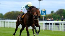 Liber Nauticus (Ryan Moore) stakes her claim for the Epsom Oaks when landing yesterday's Tattersalls Musidora Stakes at York. Photograph: Getty Images