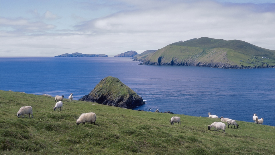 Blaskets from Slea Head