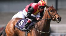Johnny Murtagh on Viztoria wins the European Breeders Fund Athasi Stakes at the Curragh earlier this month. Photograph: Inpho