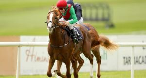 First Cornerstone, ridden by Chris Hayes, wins the Galileo European Breeders Fund Futurity Stakes at the Curragh last August. Photograph: Inpho/Ryan Byrne
