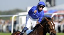 Encke lands last year's St Leger at Doncaster, denying Camelot the much coveted Triple Crown.