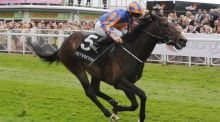 Magician, seen here winning the Dee Stakes at Chester, is the ante-post favourite for the Irish 2,000 Guineas at the Curragh.
