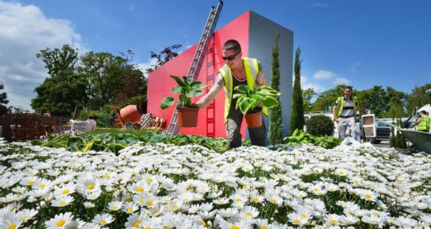 Busy time for green fingers as plants pampered ahead of