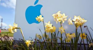 It has not been decided as yet the extent to which the letter will address claims that the Government did a special tax deal with Apple some years ago in an effort to get it to locate activities here. Photograph: Michael Mac Sweeney/Provision