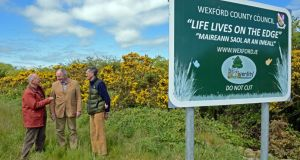 Life Lives on the Edge: Brian Rickwood, Jim Hurley and Will Warham keep an eye on uncut hedgerows in Co Wexford. Photograph: Eric Luke/The Irish Times