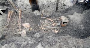The remains of a Bronze Age body found in Collinstown, Co Westmeath. One geneticist believes Irish Bronze Age farmers were all but wiped out by an Iberian invasion. Photograph: Molloy Photography