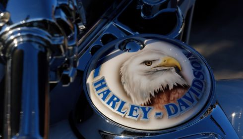 An eagle has landed: the bird as emblazoned on a Harley's fuel tank. Photograph: Stefano Rellandini/Reuters