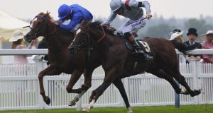 Dawn Approach, ridden by Kevin Manning (left), lands a thrilling St James's Palace Stakes at Royal Ascot.