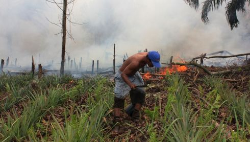 A man tries to stop a fire from spreading on land at Rokan Hilir district, Indonesia. Photograph: Aswaddy Hamid/Reuters