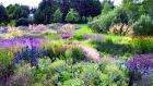 A garden in West Cork by Piet Oudolf: he also designed the High Line park in New York