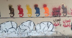 Revolutionary road signs: 'Rebel Cat' by Bahia Shehab