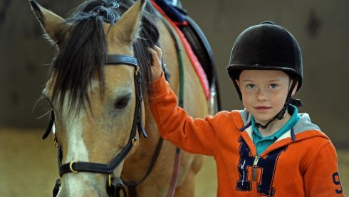 Joseph Buckley (7) , from Finglas in Dublin, gets to know one of the horses. Photograph: Eric Luke / THE IRISH TIMES.