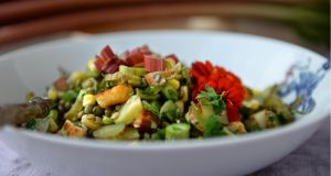 Rhubarb and lentil salad