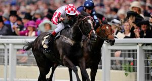 Sole Power and Johnny Murtagh winning at Royal Ascot. The Darley July Cup is next up for Eddie Lynam's star at Newmarket on Saturday.