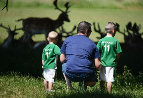 Ronnie Sands from Newry  with his  children Frank and Ronnie  Jnr  watching the deer  as they shade themselves in the Phoenix Park, yesterday.  Photograph: Cyril Byrne/The Irish Times