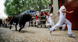 Revellers run with Fuente Ymbro's fighting bulls entering the bullring during the eighth day of the San Fermin Running Of The Bulls festival in Pamplona, Spain. Photograph: Pablo Blazquez Dominguez/Getty Images.